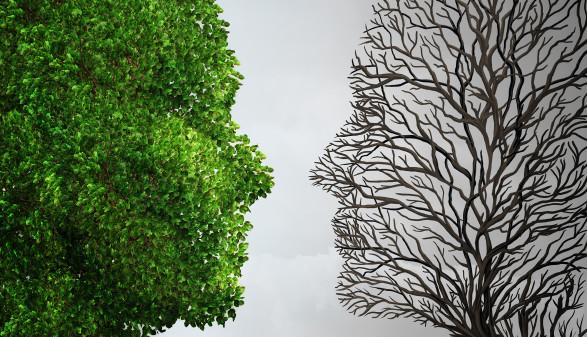 Adobe Stock Fotolia_90839245 © Adobe Stock, Fotolia